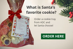 santas-fav-cookie-cta